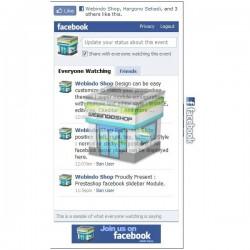 Prestashop Facebook Slidebar